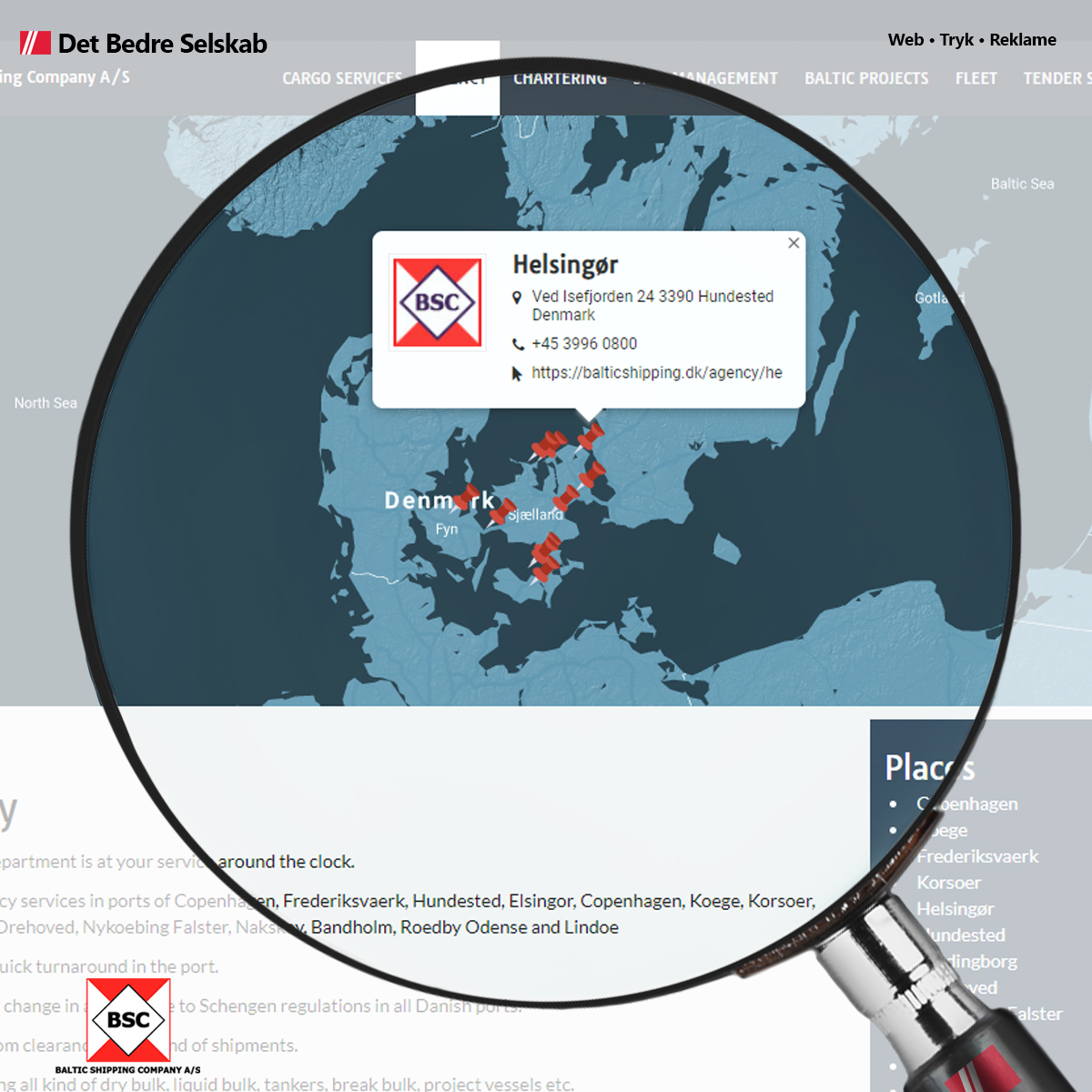 Detaljen i Baltic Shipping Company